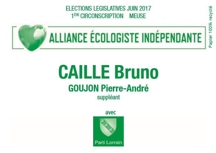 Bulletin de vote bruno caille 1ere circo meuse