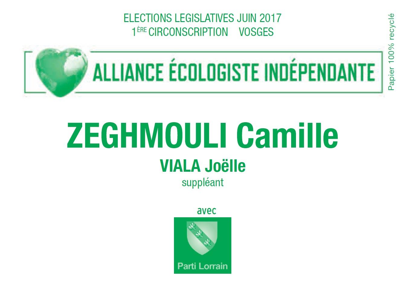 Bulletin de vote camille zeghmouli 1ere circo vosges